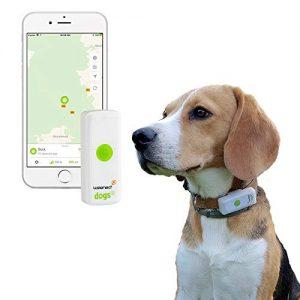 la mejor lista de localizador gps para perros para comprar por internet